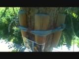 Adventure Park - Freefall