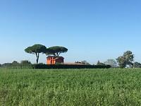 Nog een klein beetje Toscane