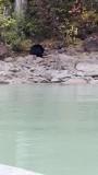 Beren jacht