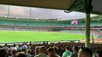 Cricket!!