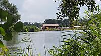 waterhout4