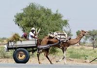 Hedendaags vervoermiddel