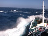 ruige zee op terugreis