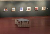 Galerij Aboriginal kunst