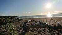 Punakaiki Beach bij zonsondergang