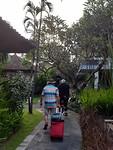 Lopend door hotel tuin naar huisje