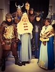 Vikingen Poolshow