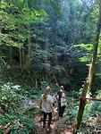 Lekker steile junglehellinkjes