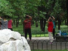 Tai chi in het park