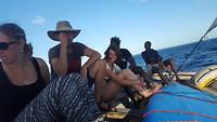 op de dhow boat