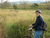 mountainbiken tussen de zebra's
