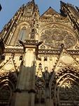 Kikkerperspectief St Vita Kathedraal