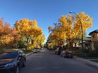 Calgary in de herfst.