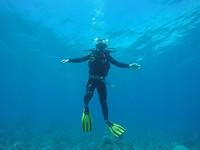 Het duiken