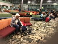 Hangi airport , Singapore