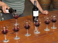 Wijntjes proeven in Mendoza