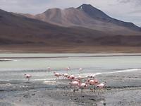 Laguna Chearcota
