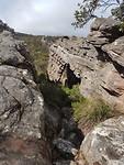 Grampians NP - The Pinnacle trail (3)