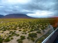 Route van Purmamarca naar San Pedro de Atacama