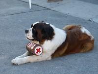 Inzamelactie voor het Rode Kruis.