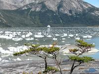 Derde excursie, naar de gletsjer, varen tussen de ijsklontjes.