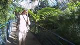 de tropische kas