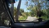 tocht door Adelaide Hills
