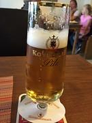 Ein Koblenzer Pils