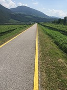 Just follow the yellow brick road