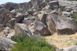 En zeggen dat het hier 3000 jaren geleden bebost en groen was.