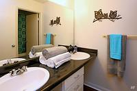 aqua-club-tallahassee-fl-dual-vanity-in-shared-floor-plan