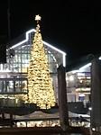Kerstsfeer in Waterfront