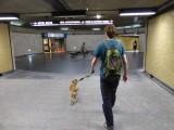 Metro naar downtown