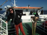 I´m on a boat