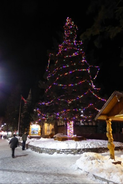 Bart & big Christmas tree in Banff