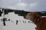 Mara geniet van het uitzicht
