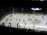 Hockey, Calgary Flames tegen de Buffalo Sabres