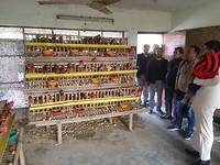 Op bezoek bij modelboerderij waar lokale jeugd wordt getraind.