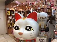 Giant kitty in Yogobashi