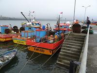 De haven van Ancud