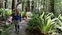 Wandeling in het sprookjesbos