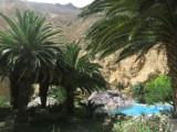 ons hotel in de oase