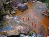 waterval inclusief monnik