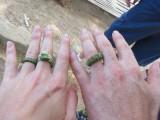 nu zijn we getrouwd, voor vandaag