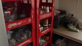 Kitchen hostellife