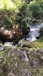 Wasserfalle Triberg -1