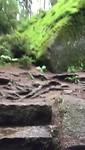 Het grootste rotslabyrint van Europa