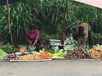 Groenten en fruit verkopers.