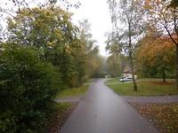 Landal Warsberg in herfstkleuren