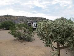 Tussen de cactussen